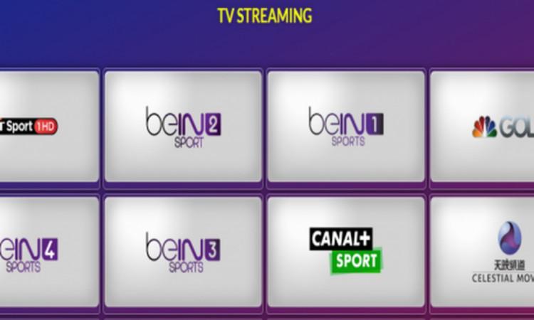 Jual Script Live TV Streaming WP Responsive U
