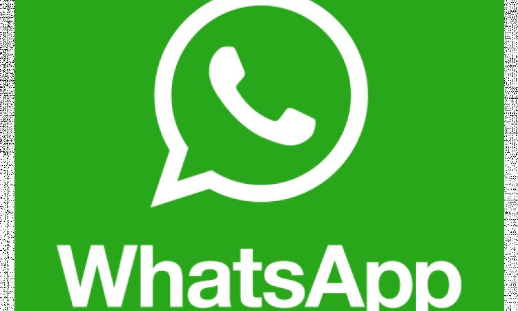 Software WA Whatsapp Gateway chat bot API blast bulk MySQL MSSQL PHP Delphi VB Oracle +source